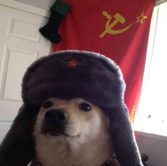 communist doge.jpg